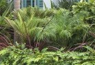 Abercorn Tropical landscaping 2
